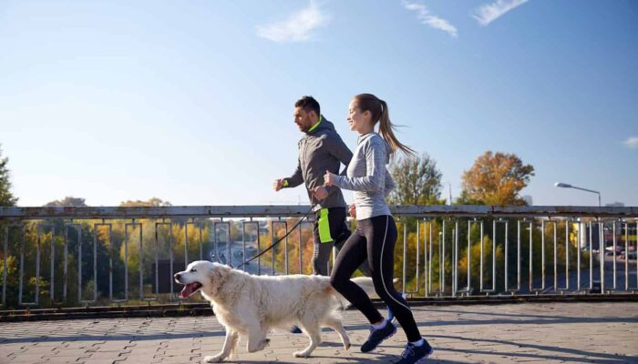 Dog Exercise – How Much Exercise Is Enough for Your Dog?