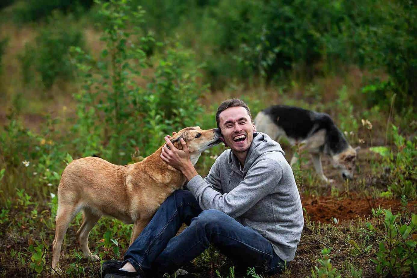Why Do Dogs Lick Your Ears? Photo of a dog licking his owner's ears