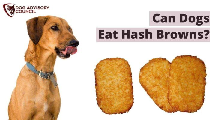 Can Dogs Eat Hash Browns? (Homemade Or McDonald's)