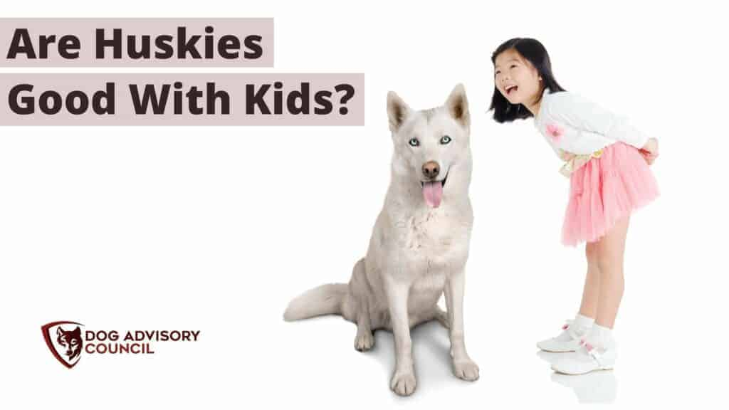 Are Huskies Good With Kids? Photo of a girl with a husky dog.
